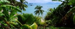 Aklimatyzacja i termoregulacja w tropikach